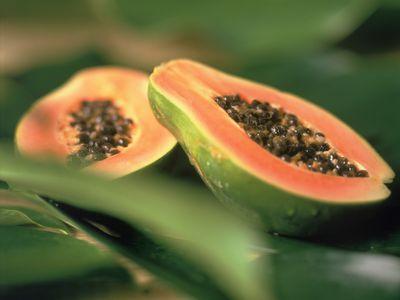como sembrar papaya desde la semilla