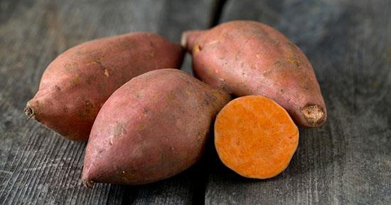 como sembrar batata blanca