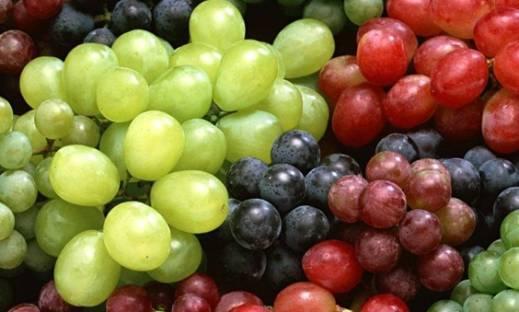 Cómo plantar uvas en macetas
